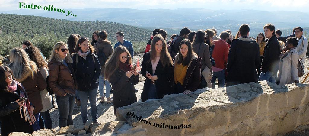 Baena: entre olivos y piedras milenarias