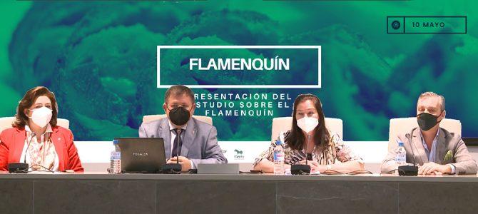 Presentación del estudio del flamenquín